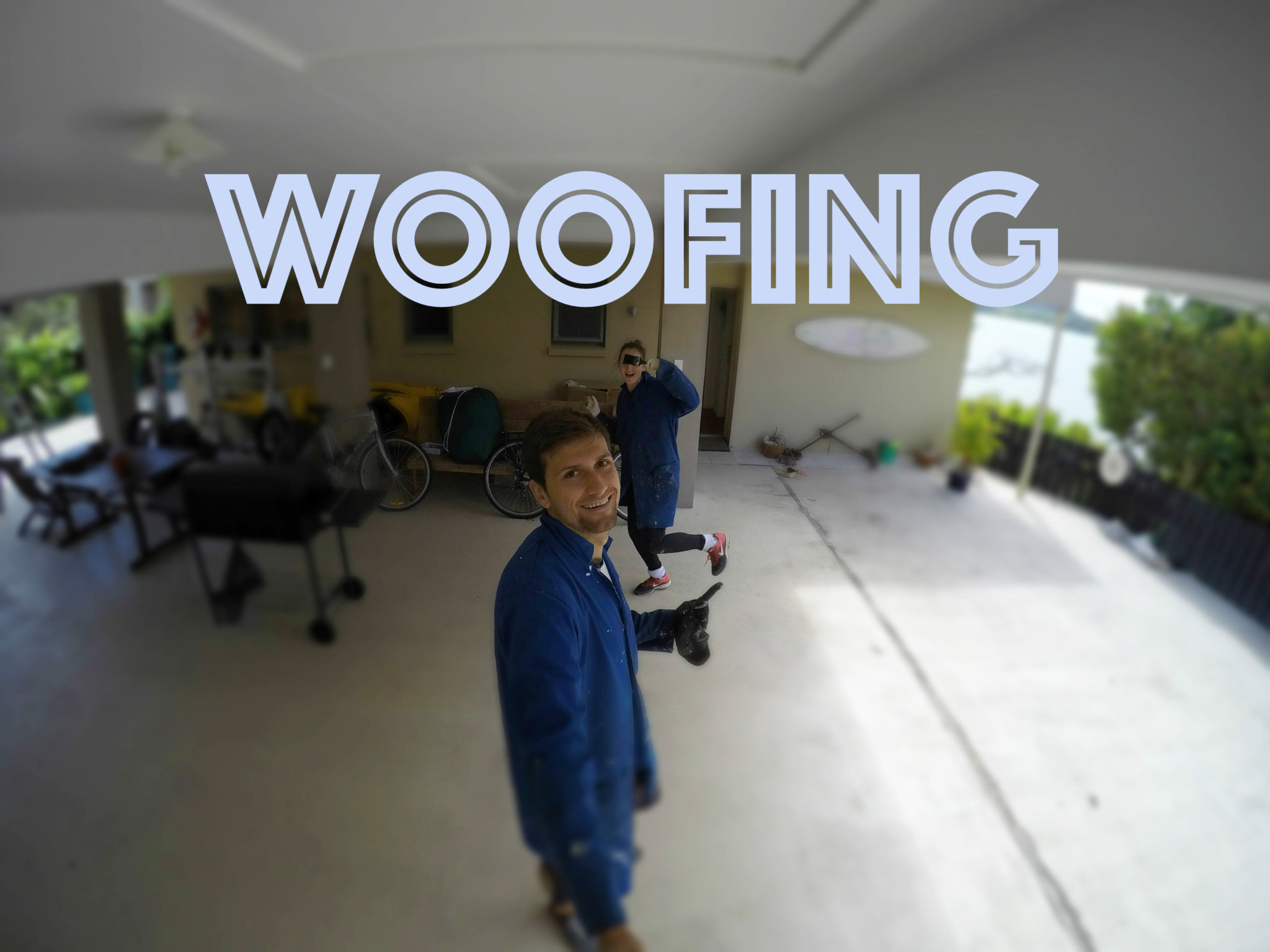 Nový Zéland Facebook: Woofing Na Novém Zélandu