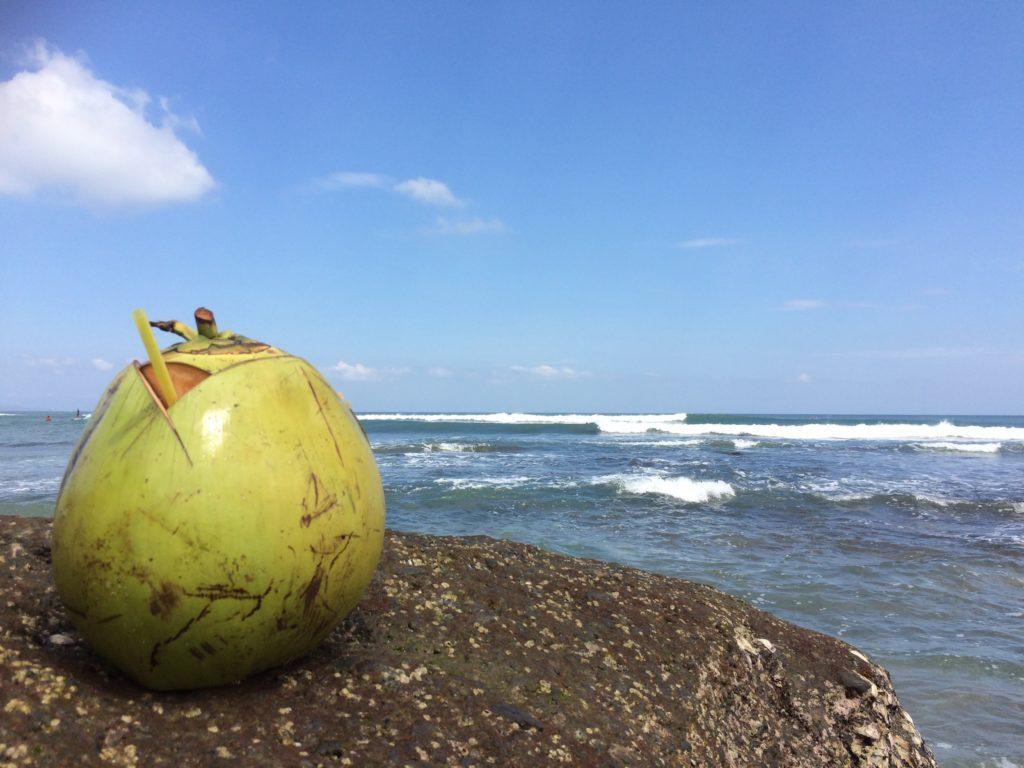 kokos canggu