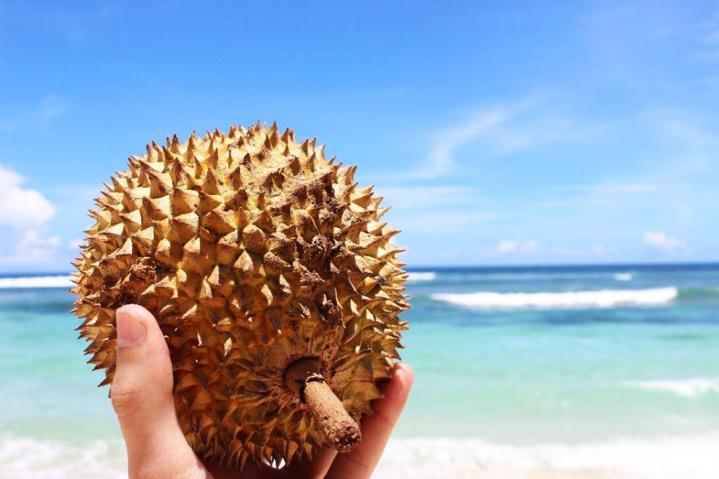 Durian_bali