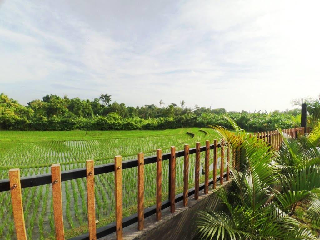 Bali ubytovani