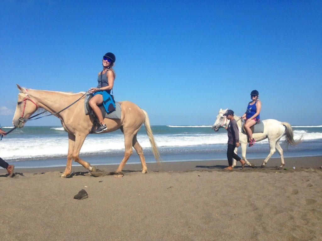 Koně Bali